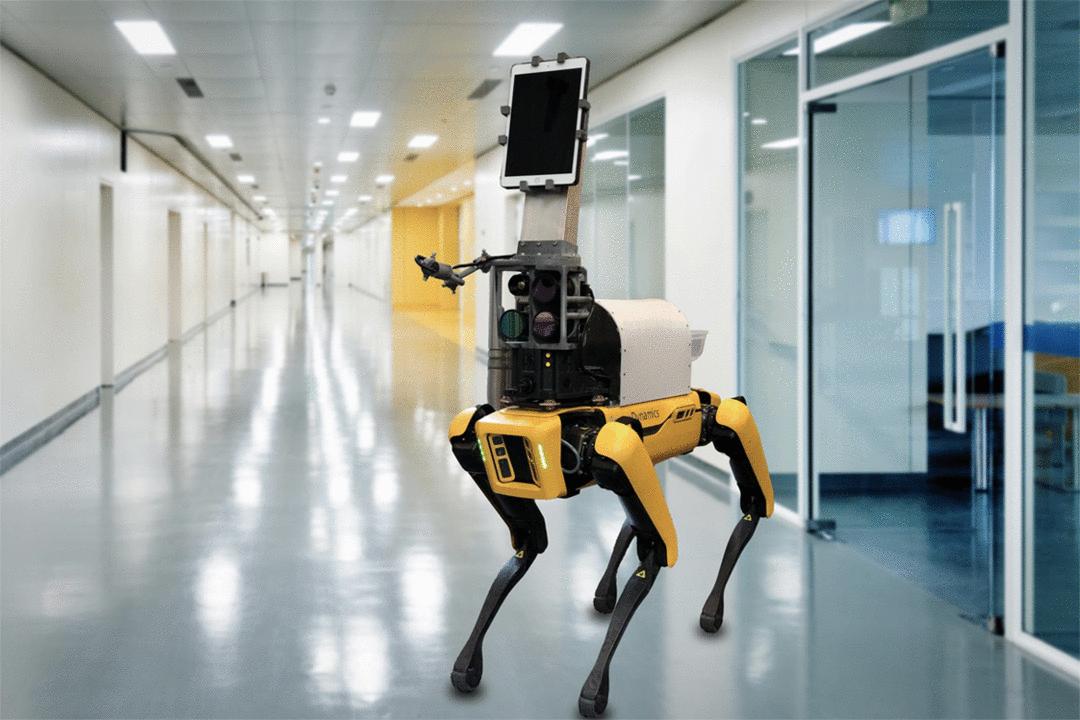 Robô mede temperatura e sinais vitais de pacientes