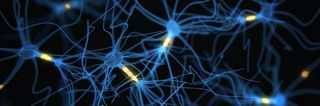 Laboratório está desenvolvendo chips híbridos formados por neurônios humanos