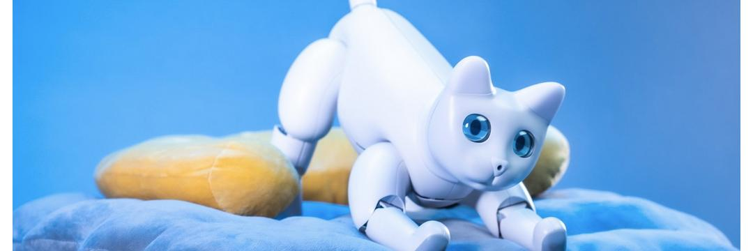 Gato-Robô pode ser o seu novo animal de estimação