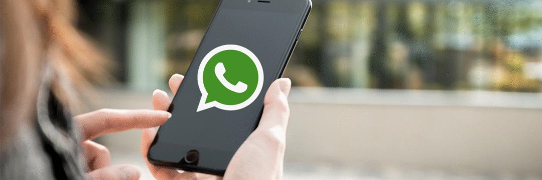 76% interagem com marcas via WhatsApp