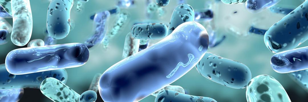 Micróbios do corpo podem revelar se morreremos nos próximos anos