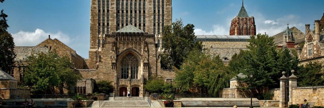 Universidade de Yale oferece curso online gratuito de felicidade e bem-estar