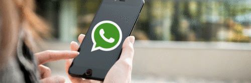 76% interagem com marcas via WhatsApp